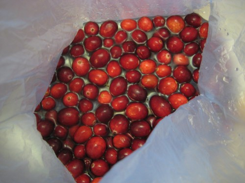 pretty red cranberries.